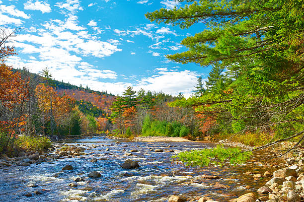 Swift River at autumn Swift River at autumn in White Mountain National Forest, New Hampshire, USA. white mountains new hampshire stock pictures, royalty-free photos & images
