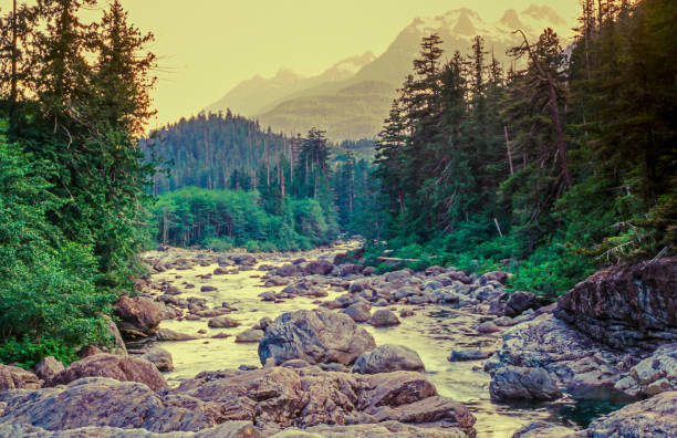 Swift river in Autumn White Mountains, New Hampshire stock photo