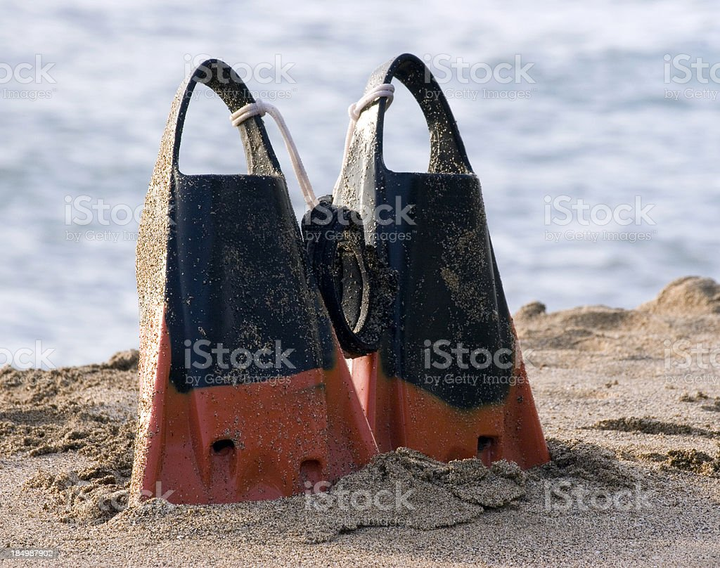 Swim Fins In The Sand royalty-free stock photo