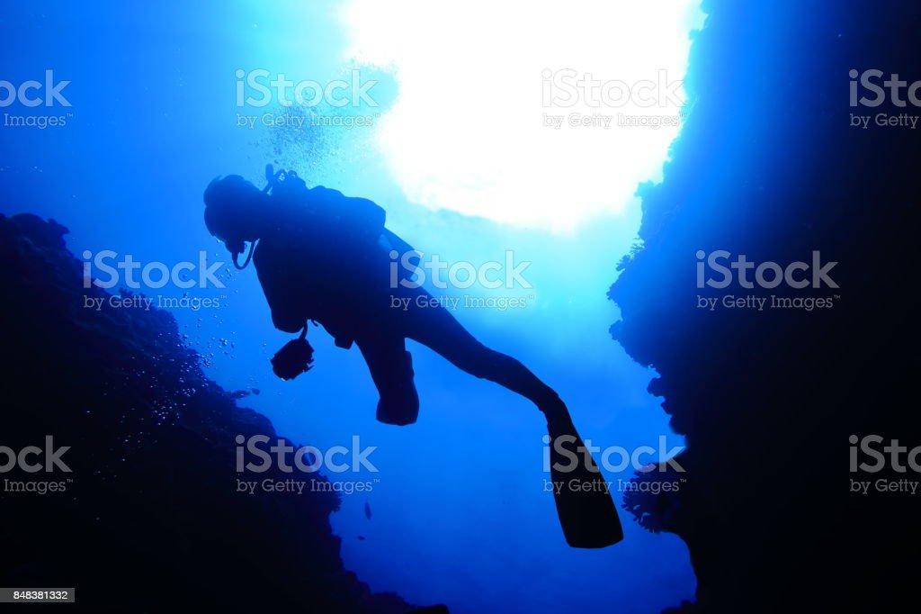 Swim in the cave of the ocean floor stock photo