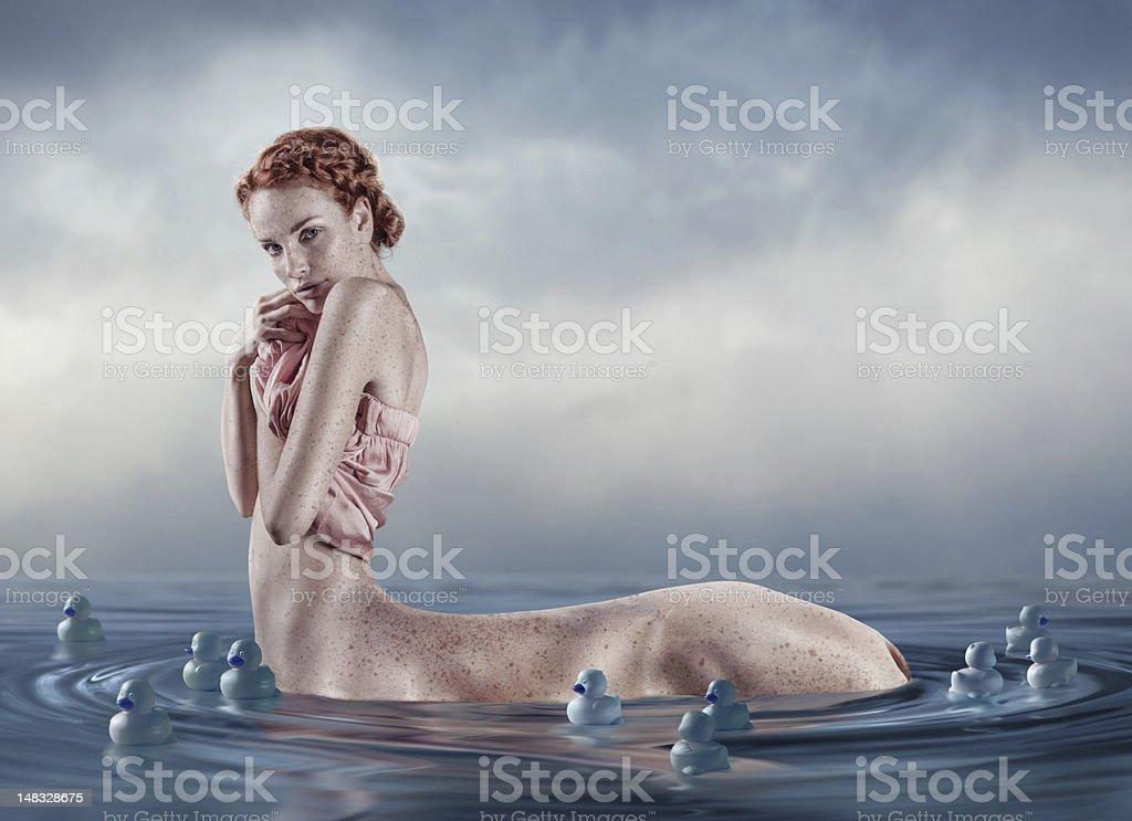 swim of pearl horse stock photo