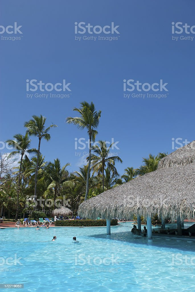 Swim Up Bar with Thatched Roof Caribbean Resort stock photo