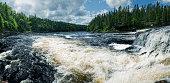 Atlantic Salmon jump a set of falls in Northern Newfoundland.