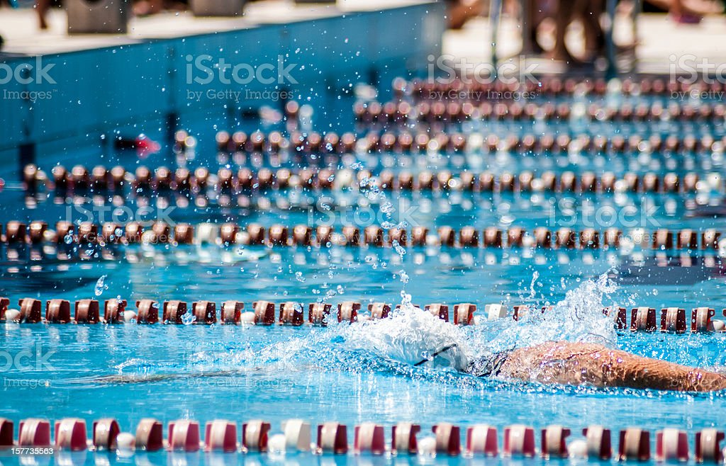 Swimmer in a sport pool stock photo