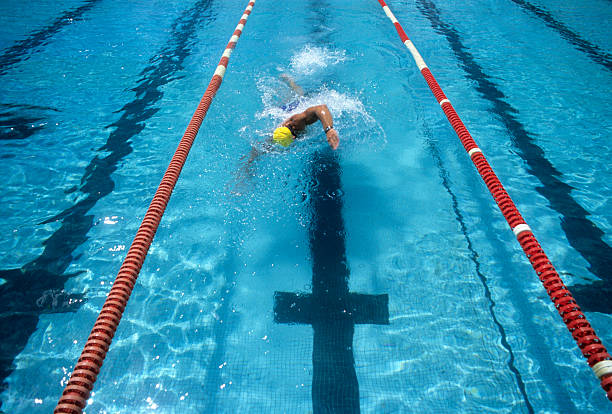 Swimmer in a swimming pool lane racing to the finish stock photo