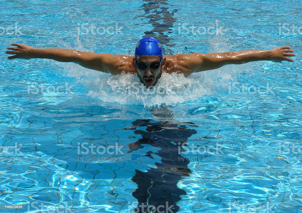 Swimmer Swimming Butterfly stock photo