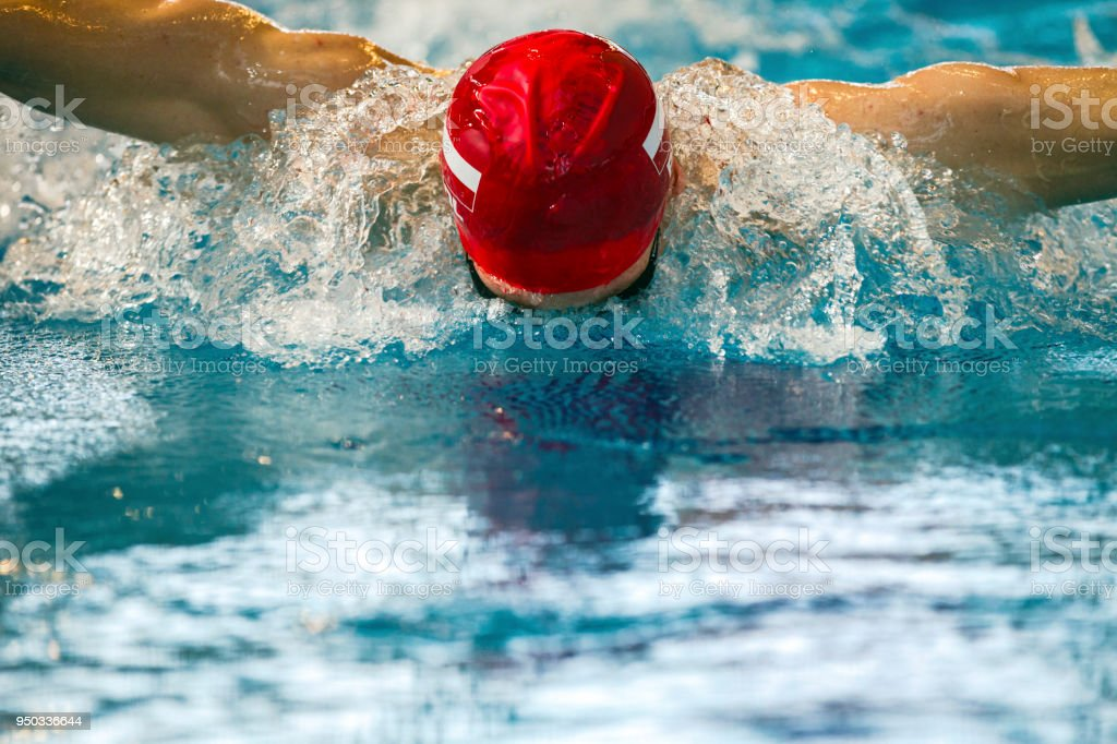 Swimmer Training Butterfly Stroke In Swimming Pool Stock Photo - Download  Image Now