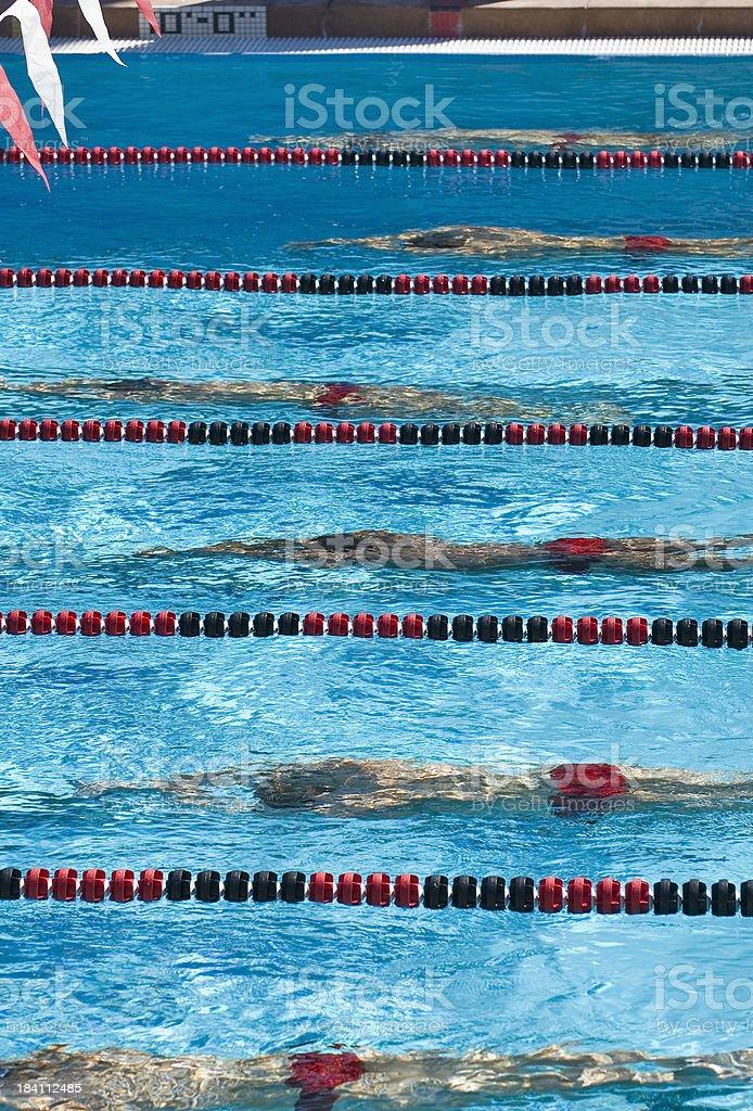 Nuotatori in una gara di nuoto foto stock royalty-free