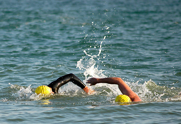 swimmers - english channel stock pictures, royalty-free photos & images
