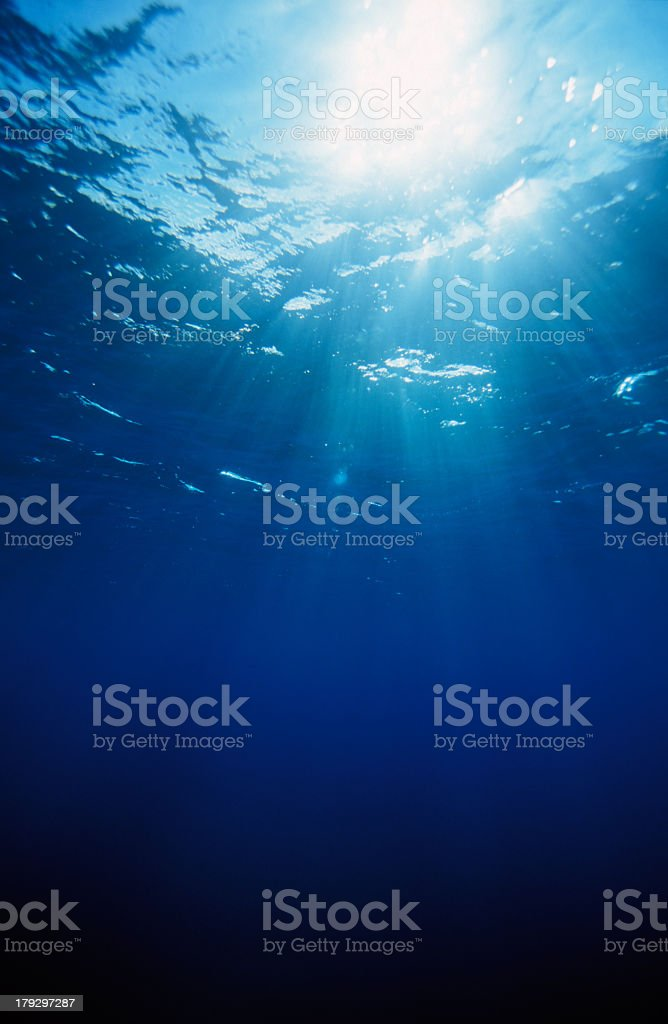 Swimming in the deep blue sea watching the sun rays stock photo