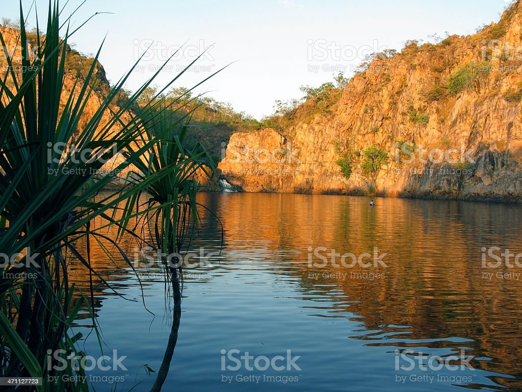 Swimming in the lake royalty-free stock photo