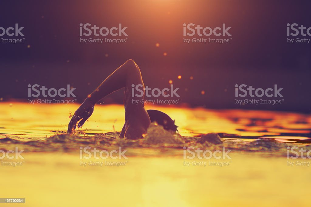 Swimming in tropical colors stock photo