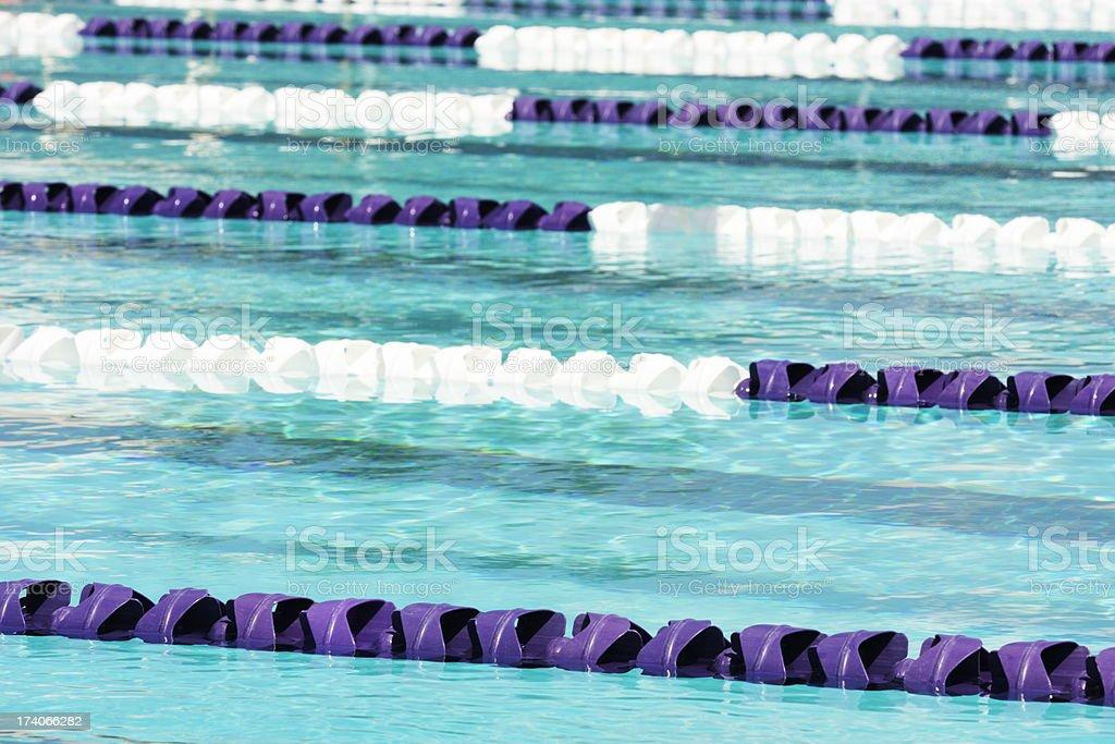 Swimming Lane Markers Lap Pool stock photo