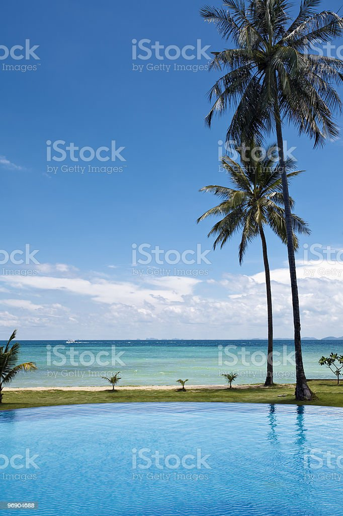Swimming pool and palm trees. royalty-free stock photo