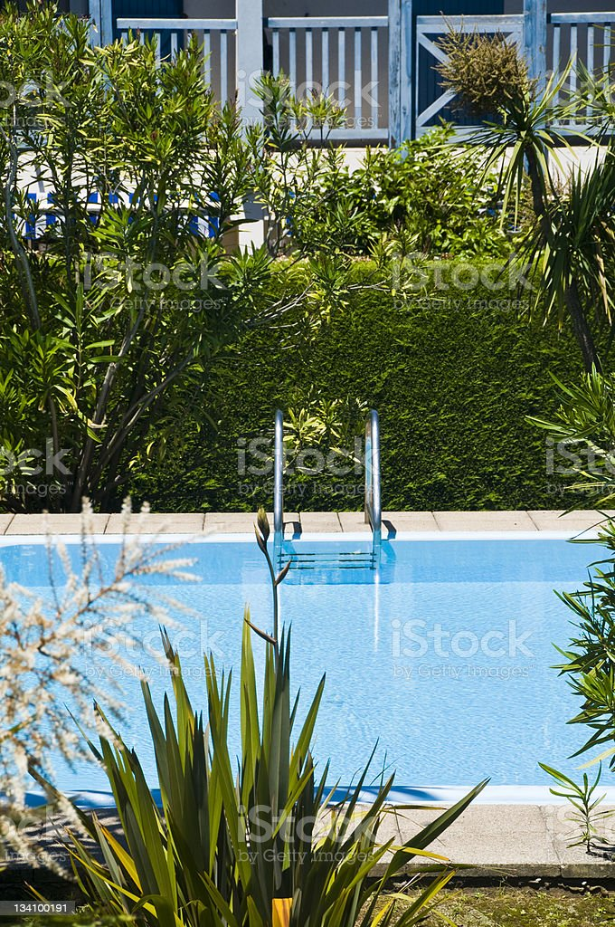 Swimming Pool And Plants Stock Photo Download Image Now Istock