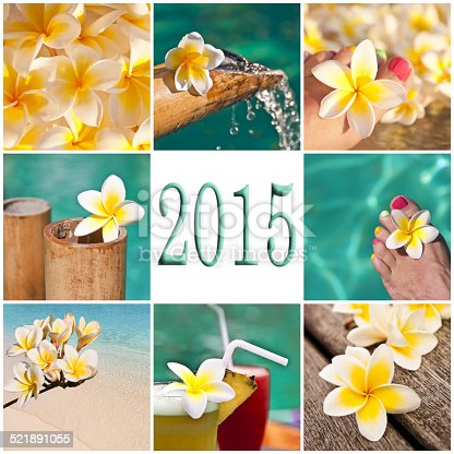 1088451256 istock photo 2015, swimming pool and plumeria collage 521891055