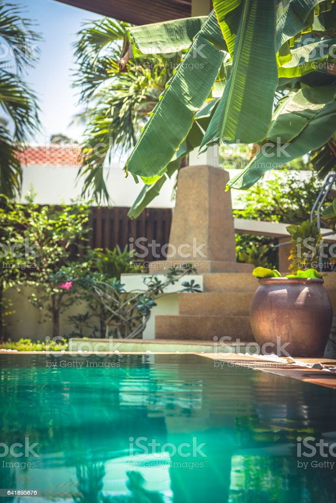 Swimming Pool At Private Tropical Villa With Palm Trees And ...