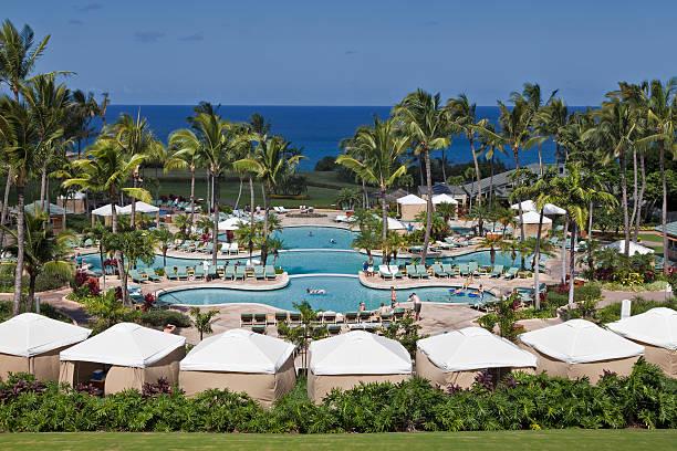 Swimming Pool at the Ritz Carlton stock photo