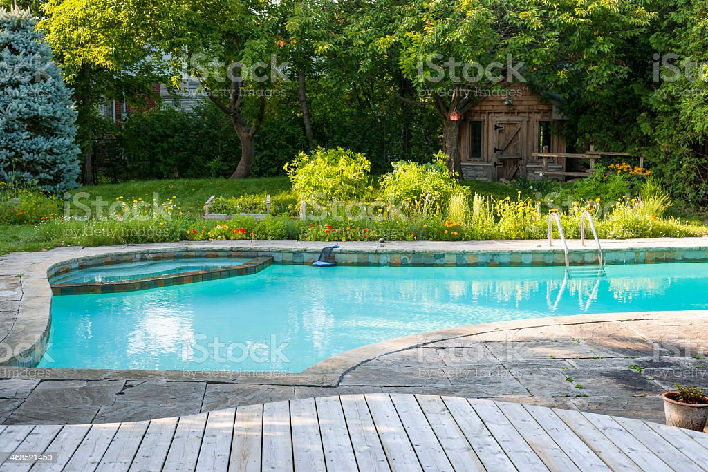 Swimming pool in backyard stock photo
