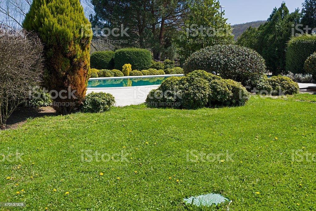 Swimming pool in garden. stock photo