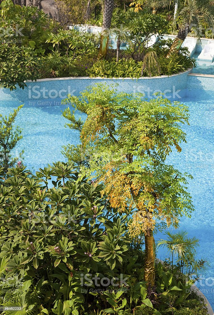 Swimming pool in garden royalty-free stock photo