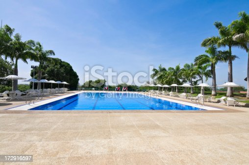 Competition Swimming Pool with Palm Trees at a Tropical Resort.