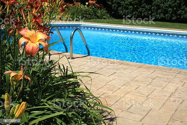 Swimming Pool With Copy Space Stock Photo - Download Image Now