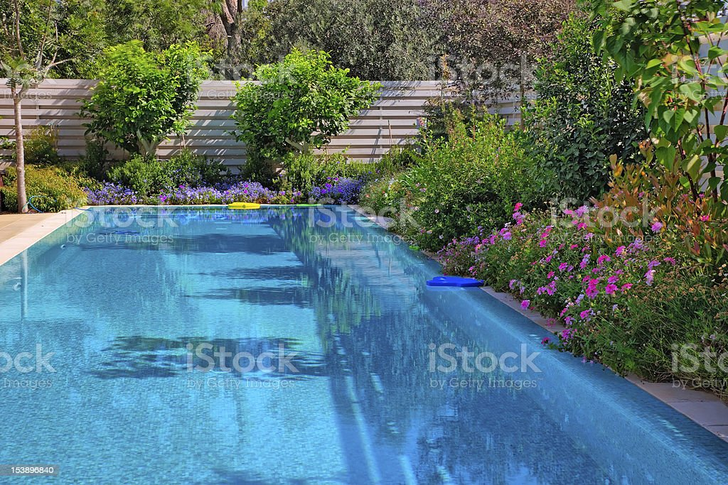 Swimming pool with flowers stock photo