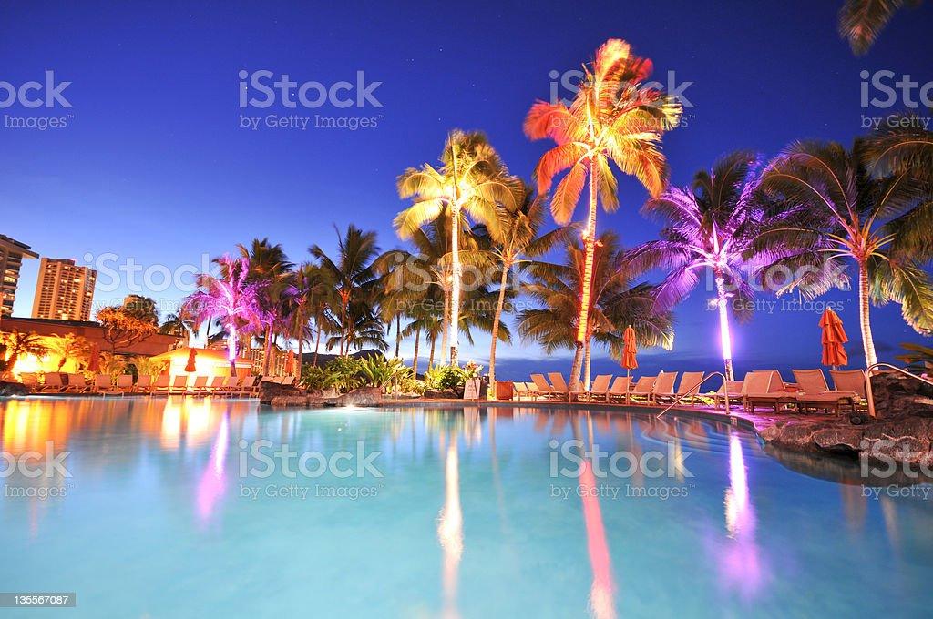pool mit Palmen bei Nacht – Foto