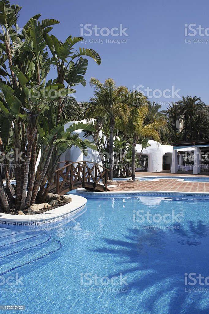 Swimming pool with palm trees royalty-free stock photo