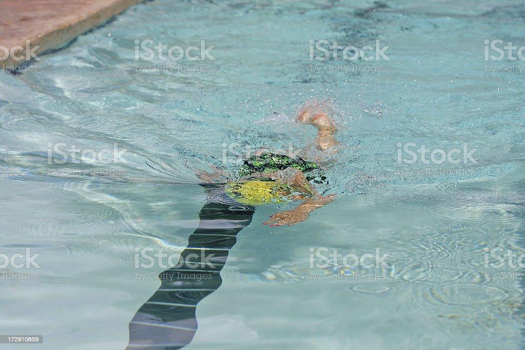 Swimming Racer stock photo