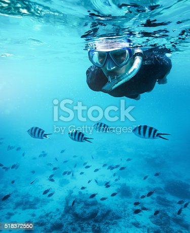 istock Swimming With Fishes 518372550