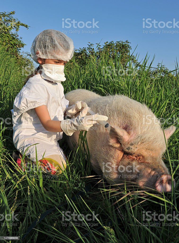Swine Influenza Flu stock photo