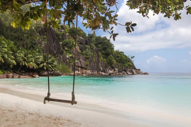 Swing at Seychelles Beach Lagoon stock photo