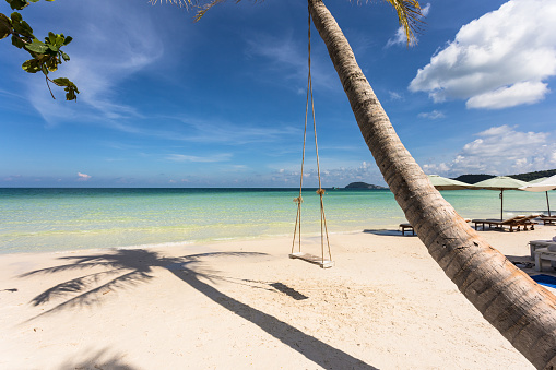 Swing attached to a palm tree in the idyllic Bai Sao beach in Phu Quoc island in Vietnam