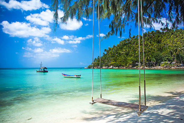 Swing hang from coconut tree over beach, Phangan island ,Thailand Swing hang from coconut tree over beach, Phangan island koh chang stock pictures, royalty-free photos & images