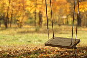 swing in autumn park