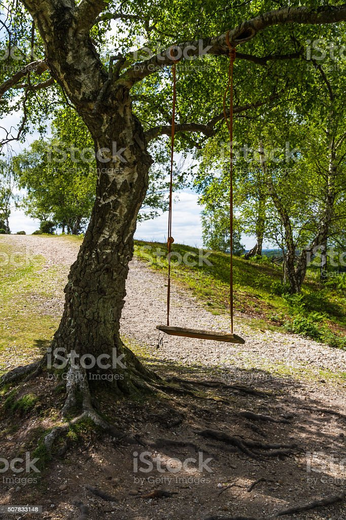 Swing in shade on sunny day stock photo