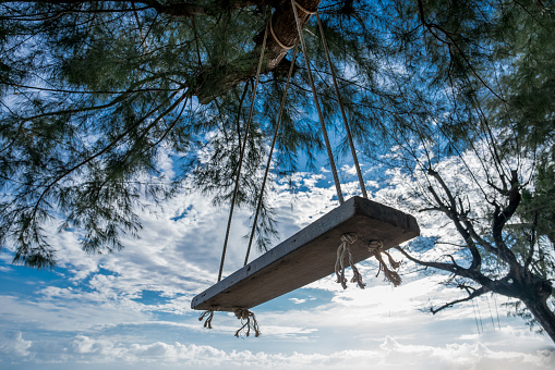 Swing made of wood hanging under the pine trees by the sea, sky background, and white clouds.