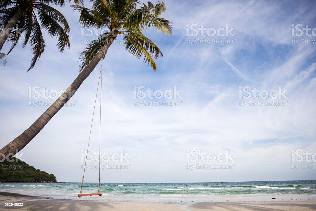 Swing on a tropical beach foto de stock libre de derechos