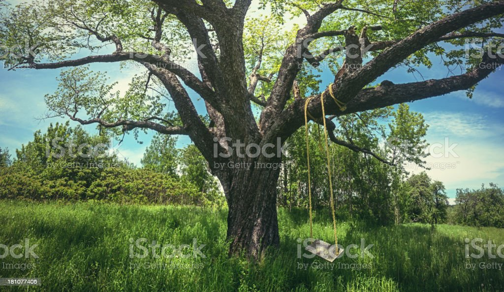 Swing the Summer Away stock photo