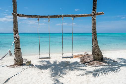 swings on a tropical beach