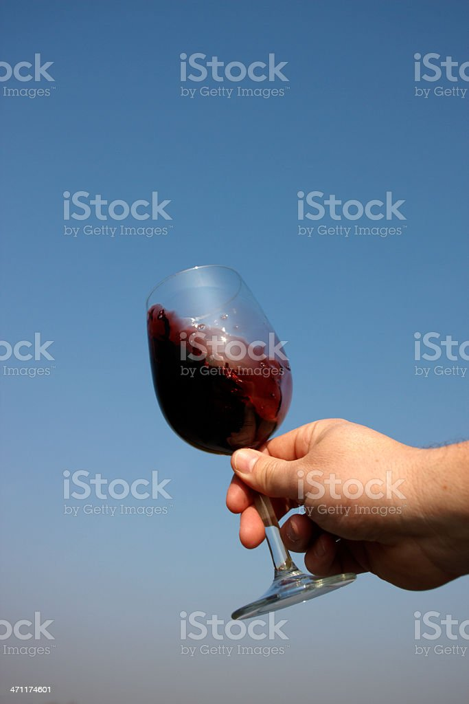 Swirling Wine royalty-free stock photo