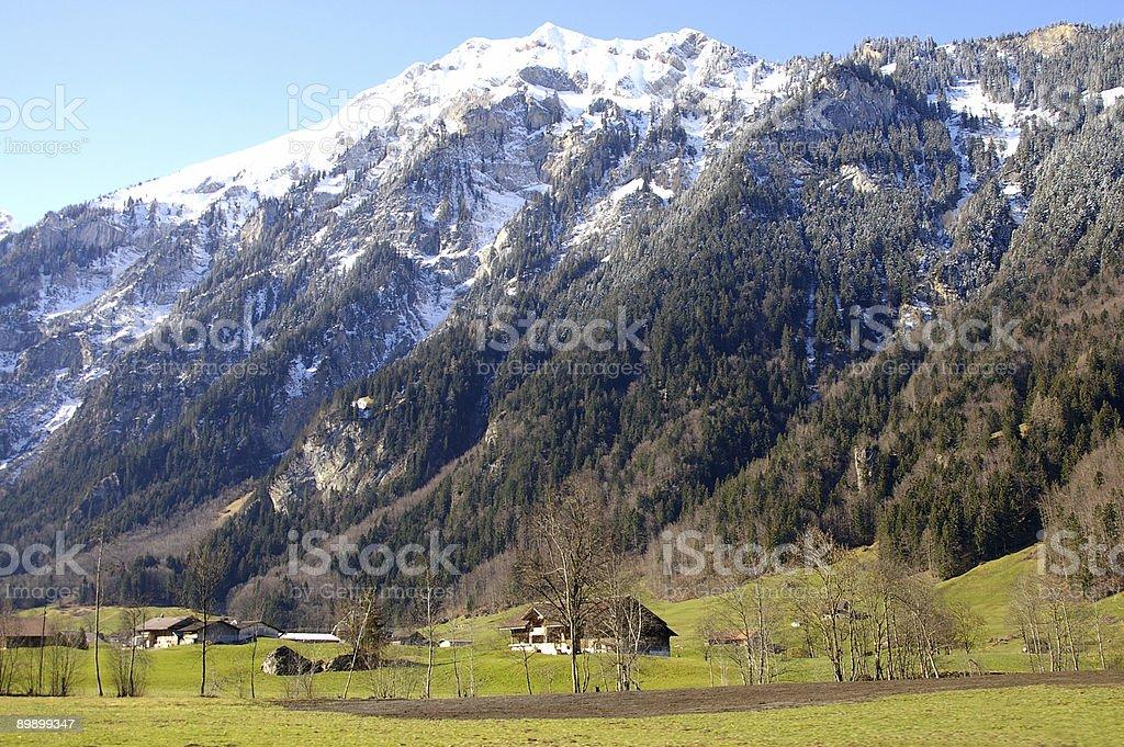 Swiss alps 2 royalty-free stock photo