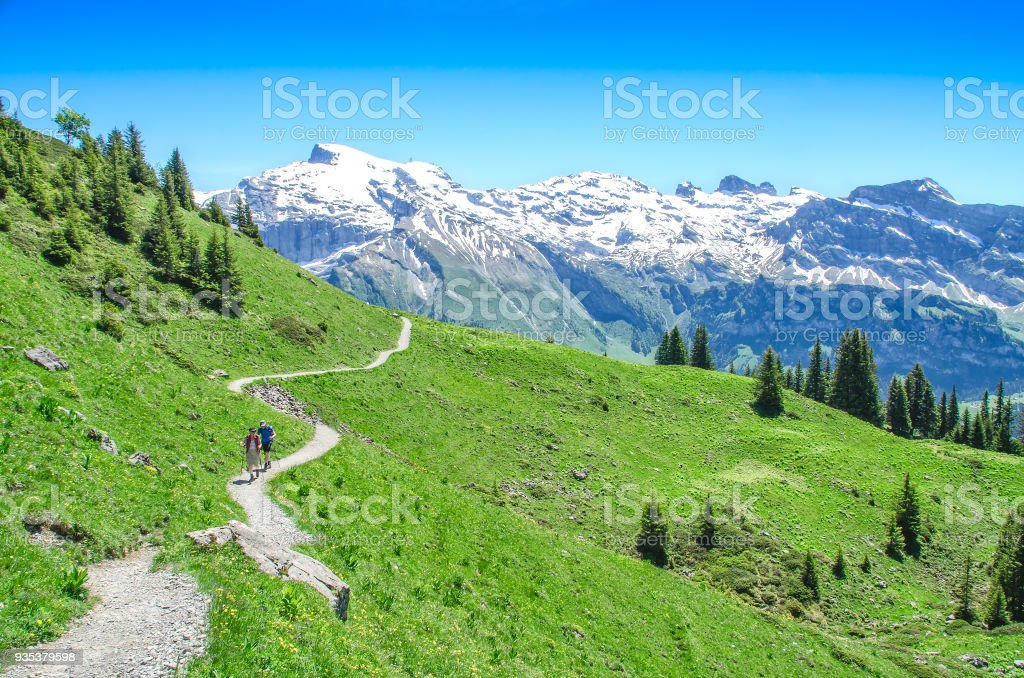 Swiss alps in the summer season. Trekking in the mountainous stock photo