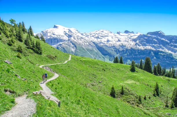 swiss alps in the summer season. trekking in the mountainous - европейские альпы стоковые фото и изображения