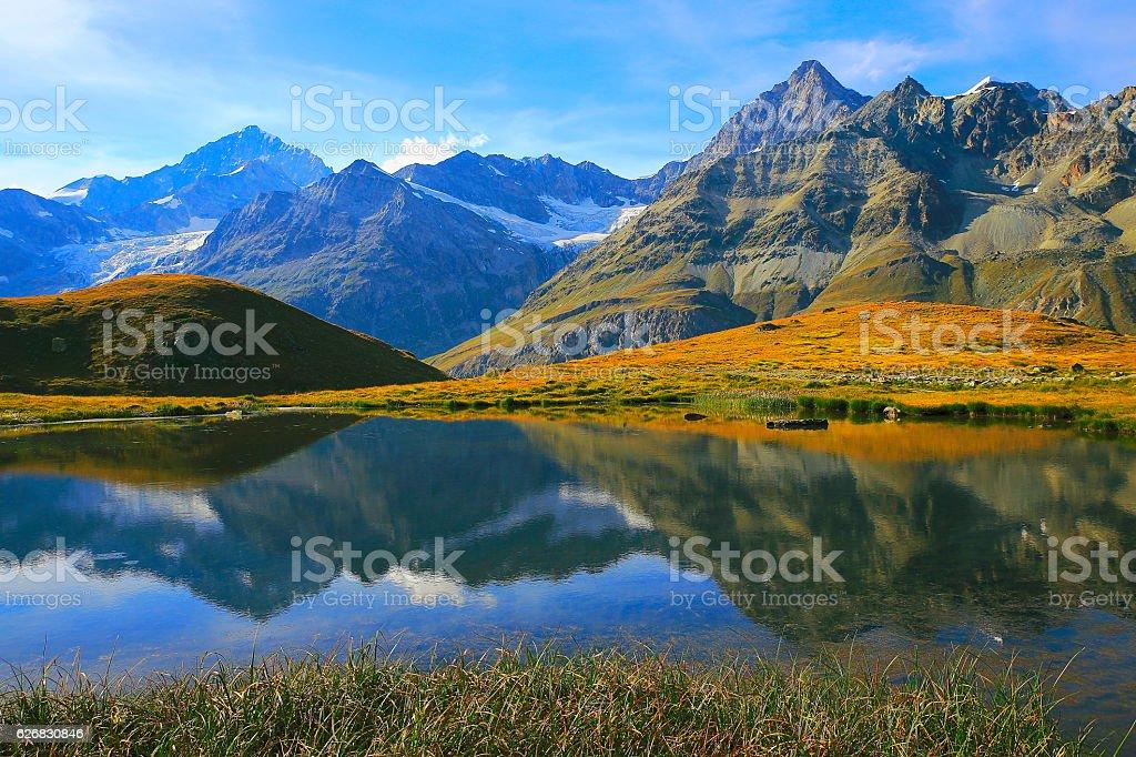 Swiss alps landscape: Alpine Lake reflection,  golden meadows stock photo