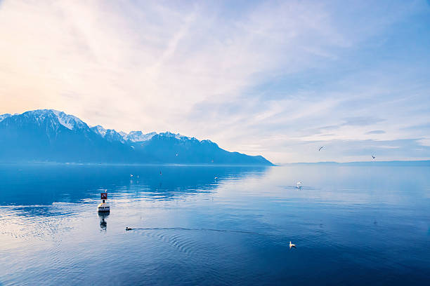 swiss alps looking over lake geneva in montreux, switzerland - lake geneva stock photos and pictures