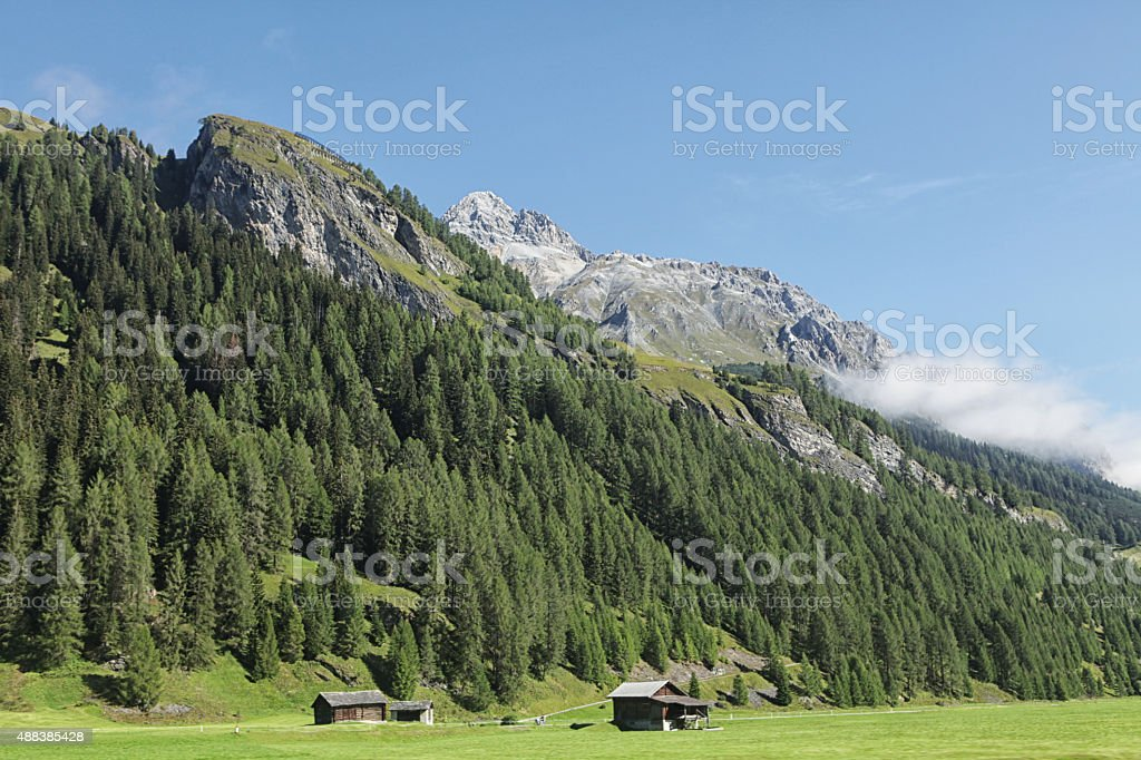 Swiss Alps mountain range with pine tree forest stock photo