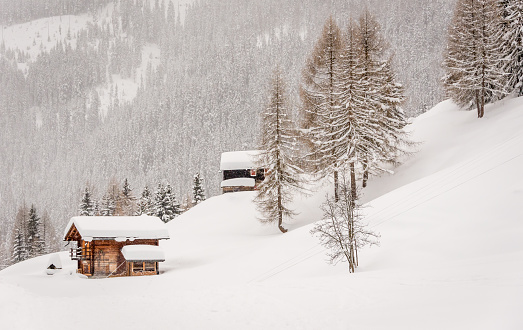 Swiss chalets in the snow